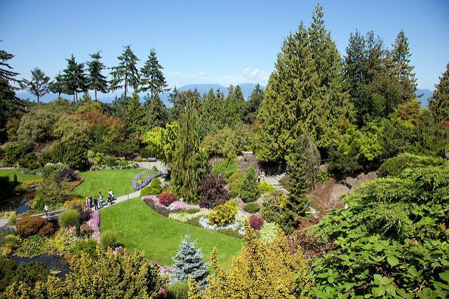 Photo of Queen Elizabeth Park by s.yume