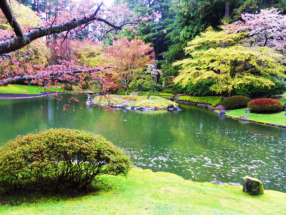 7 Beautiful Parks And Gardens In Vancouver | YWCA Metro Vancouver Blog